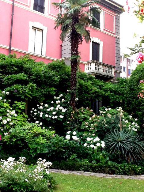 disegno Casa Giardino : la casa giardino fiorito disegno giardino fiorito di disegno ...